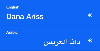 The effectiveness of Google Translate.
